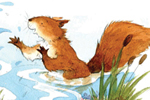 Hannah Whitty Illustration - hannah whitty, commercial, paint, painted, watercolour, picture book, picturebook, fiction, animals, hedgehogs, squirrels, moles, water, ponds, lakes, rivers, streams