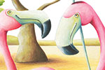 Bruno Robert Illustration - bruno, robert, bruno robert, painted, traditional, paint, commercial, picture book, young reader, YA, sweet, flamingos, birds, ostrich, wildlife, animals
