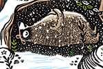 Erin Balzer Illustration - erin, balzer, erin balzer, wood printing, printing, licensing, picture book, stationary, greetings cards, christmas, seasonal, festive, YA, young reader, bear, elf, snow, forest, pattern
