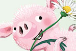 Eefje Kuijl Illustration - eefje, kuijl, eefji kuijl, commercial, educational, picture book, mass market, greetings cards, young reader, YA, digital, photoshop, illustrator, colour,, humour, daisies, flowers, plants, nature, pigs, piglets, jumping, hedgehogs, trees