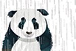 Jonny Lambert Illustration - jonny, lambert, jonny lambert, jonathan, lambert, jonathan lambert, digital, commercial, trade, picture book, fiction, educational, rain, weather, panda, frog, leaves, text, cute, texture