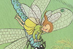 Jennifer Miles Illustration - ennifer, miles, jennifer miles, watercolour, traditional, painted, educational, picture book, commercial, digital, girly, dragonfly, wings, flying,  cute, secret, wall, tree sweet, fairies, fairy, garden, plants, flowers, nature