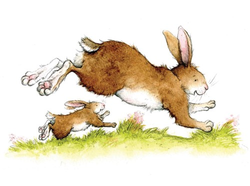 Hannah Whitty Illustration - hannah whitty, commercial, paint, painted, watercolour, picture book, picturebook, fiction, animals, rabbits, rabbit, hares, bunny, bunnies