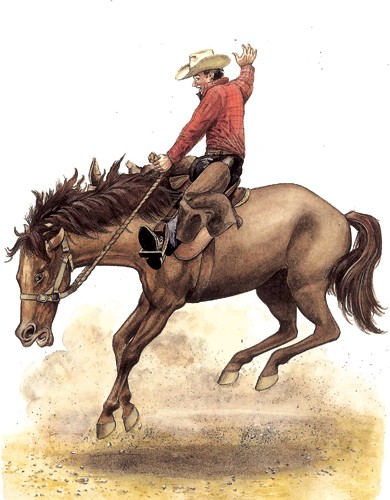 Peter Wilks Illustration - eter, wilks, peter wilks, paint, painted, educational, traditional, watercolour, people, man, cowboy, horse, horses, animal, animals