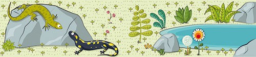 Ana Garcia Illustration - ana, garcia, ana garcia, commercial, educational, mass market, novelty, board books, activity, puzzle, board games, digital, photoshop, illustrator, lizards, animals, plants, wildlife, rocks, flowers,