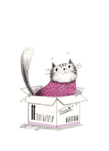 Ashley King Illustration - ashley, king, ashley king, illustrator, fiction, picture book, mass market, young reader, YA, traditional, pen, pencil, pattern, black line, black and white, b+w, colour, coloured pencil, cat, box, cute, sweet,