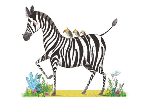 Ashley King Illustration - ashley, king, ashley king, illustrator, fiction, picture book, mass market, young reader, YA, traditional, pen, pencil, pattern, black line, black and white, b+w, colour, coloured pencil, zebra, birds, plants, animals, wildlife, funny, humour