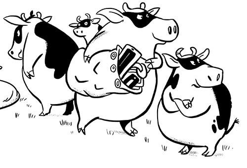 Alex Paterson Illustration - alex, paterson, alex paterson, illustration, digital, photoshop, pen, pencil, pencil work, black and white, b & w, non-fiction, educational, environment, planet, cows, bunglers, masks, animal, farm, crass, stealing, bags, theft, sacks, naughty, funny,