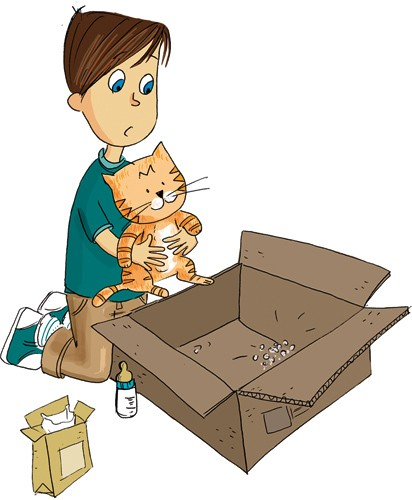 Adriana Puglisi Illustration - adriana puglisi, digital, paint, painted, commercial, educational, photoshop, illustrator, young fiction, editorial, children, people, boys, pets, animals, cats, kittens, kittys, boxes, training,
