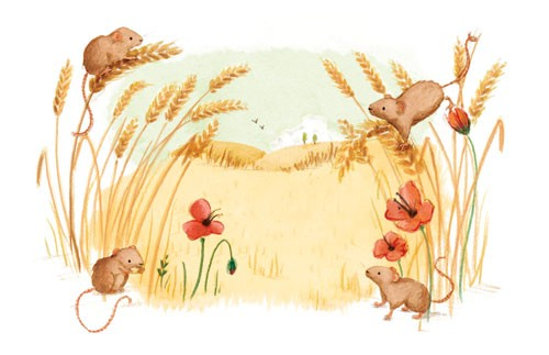 Antonia Woodward Illustration - antonia, woodward, antonia woodward, commercial, trade, picture book, picturebook, novelty, sweet, fiction, traditional, painted, field, meadow, mice, animals, flowers, colour, colourful, hills, sky, clouds, birds, barley