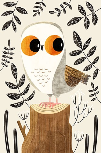 Brendan Kearney Illustration - brendan, kearney, brendan kearney, illustration, colourful, digital, photoshop, hand-drawn, colour, mass market, fiction, picture book, animal, nature, wild, owl, tree, stump, log, leaves, feathers, cute, eyes,