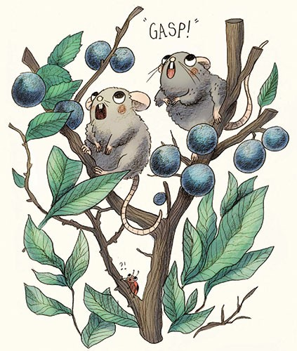 Brittany E. Lakin Illustration - brittany, e., lakin, brittany e. lakin, illustration, pencil, drawing, photoshop, colour, colourful, commerical, mass market, plants, berries, blueberries, animals, wild, mice, shock, gasp, ladybird, nature, leaves,