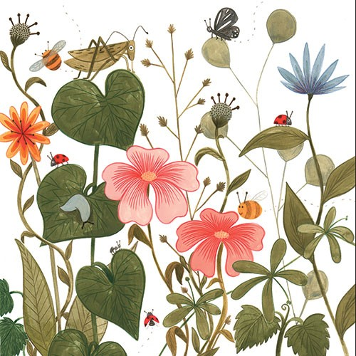 Claire Shorrock Illustration - claire, shorrock, claire shorrock, cute, sweet, illustrator, illustration, photoshop, digital, paint, painterly, pencil, traditional, pencil crayon, fiction, young reader, picture book, colourful, plants, flowers, gardens, bee, cricket, wildlife, leaves,