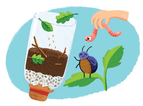 Esther van den Berg Illustration - esther van den berg, esther, van den berg, painted, digital, commercial, advertising, advertisements, posters, editorial, magazines, mass market, trade, photoshop, illustrator,bottle, worm, learning, soil, leaves, wildlife, garden, nature, bug, beetle, in