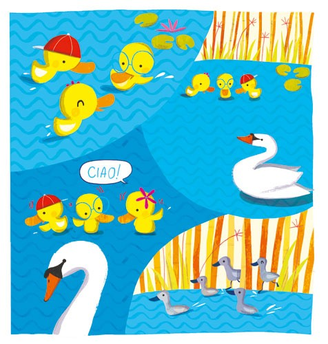 Giuditta Gaviraghi Illustration - giuditta, gaviraghi, guiditta gaviraghi, acrylic, paint, painted, traditional, commercial, picture book, picturebook, colour, colourful, sweet, cute, animals,swans, ducks, ducklings, water, pond, lily pads , text, type