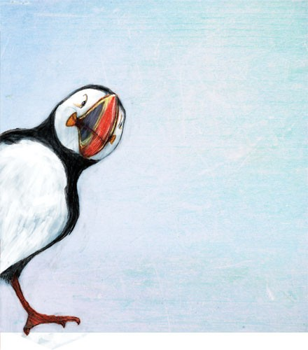 Gabby Grant Illustration - gabby grant, gabby, grant, traditional, digital, picture book, fiction, educational, graphic novel, commercial, painted, classic, bird, puffin, colour, colourful, sky,