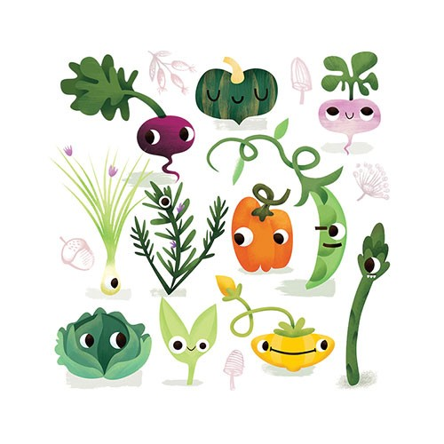 Jana Curll Illustration - jana, curll, jana curll, commercial, education, fiction, young reader, picture book, mass market, value, sweet, cute, young, photoshop, digital, illustrator, vegetables, food, beetroot, pumpkin, beans, green beans, asparagus, lettuce, peppers, garden, gro