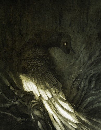 Jana  Heidersdorf Illustration - ana, heidersdorf, jana heidersdorf, illustrator, illustration, painterly, person, figure, photoshop, hand drawn, pencil, coloured pencil, dark, fantasy, adventure, magic, mystery, dark, spooky, bird, animal, YA, young reader