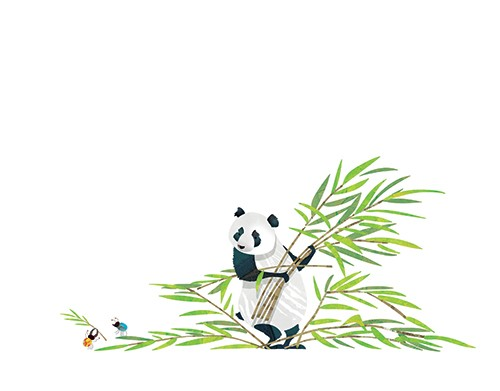 Jonny Lambert Illustration - jonny, lambert, jonny lambert, jonathan, lambert, jonathan lambert, digital, commercial, trade, picture book, fiction, educational, animals, panda, YA, young reader, leaves, colour, leaves, insects