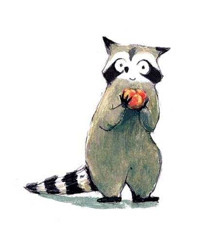 Julia Moscardo Illustration - Júlia Moscardó, illustrator, traditional, pencil, line work, hand drawn, texture, crayon, colour, colourful, racoon, animal, wild, fruit, tomato, apple, happy, hiding, character, cute, sweet, stripes, stripey, tail, nature