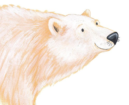 Lucy Boden Illustration - lucy, boden, lucy boden, novelty, mass market, commercial, acrylic, painted, picture book, fiction, animals, bear, wildlife, polar bear, white, snowy