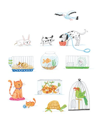 Marina Aizen Illustration - marina aizen, marina, aizen, young, picture books, fiction, trade, crayon, pattern, cute, sweet, digital, animals, cats, dogs, fish, parrot, cage, bowl, hamster, tortoise, pet shop