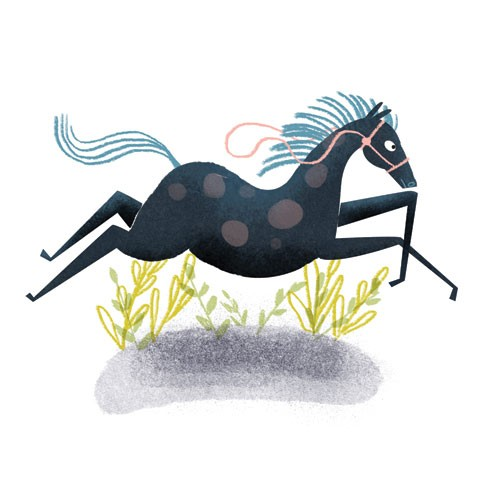 Marisa Morea Illustration - marisa, morea, marisa morea, trade, picture books, greetings cards, editorial, fiction, advertising, magazines, stationary, printed, textured, painted, digital, photoshop, illustrator, retro, horse, pony, foals, ponies, running, galloping, decorative