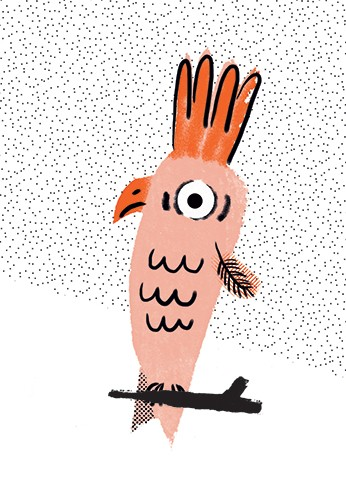 Miro Poferl Illustration - miro poferl, illustrator, trade, picture book, characters, YA, young reader, YA, young reader, bird, animal, pattern, print, mark making