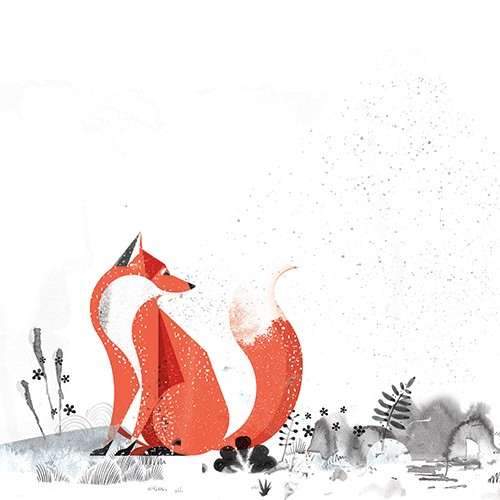 Neil Clark Illustration - neil, clark, neil clark, digital, photoshop, illustrator, picture book, young reader, mass market, trade, black and white, b&w, mixed media, landscape, world, fox, plants, flowers