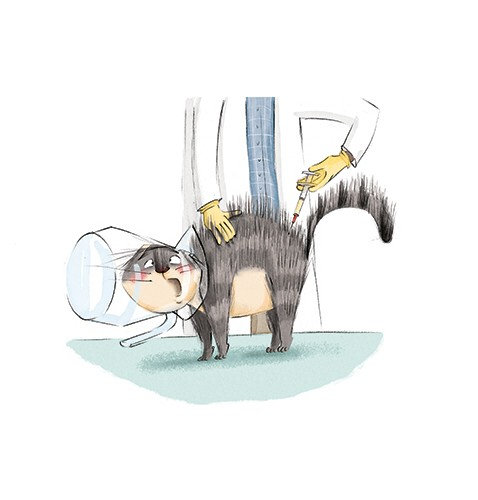 Olivia Beckman Illustration - olivia, beckman, olivia beckman, marta, fernandez, marta fernandez, trade, fiction, picture book, cute, sweet, painted, digital, photoshop, traditional, textured, cat, pet, jar, stuck, funny, accident, doctor, vet, needle, surprise,
