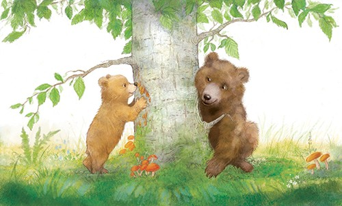 Petra Brown Illustration - etra, brown, petra brown, watercolour, paint, painted, commercial, traditional, trade, picture book, picture book, cute, sweet, young, bears, mum, child, parent, mother, autumn, conkers, tree, leaves, mushrooms, nature,