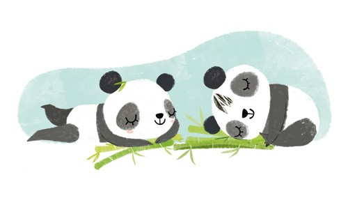 Purificacion Hernandez Illustration - Purificacion, hernandez, purificacion hernandez, commercial, trade, fiction, greetings cards, cute, sweet, young, picture books, activity, stationary, digital, photoshop, illustrator, painted, pandas, cute, animals, sweet, humour