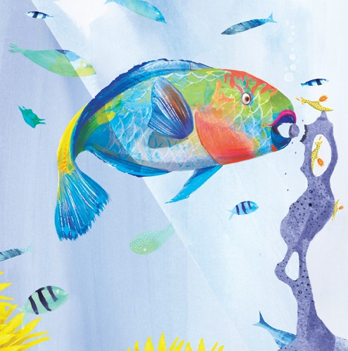 Puy Pinillos Illustration - puy, pillinos, puy pillinos, digital, mixed media, trade, commercial, picture book, novelty, animals, bright, colourful, YA,young reader, fish, bubbles, underwater, water, ocean, sea