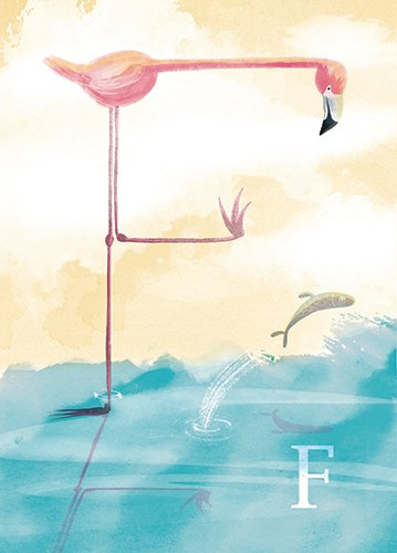 Rocio Del Moral Illustration - rocio del moral, illustrator, digital, fiction, colour, colourful, texture, pencil, line work, board books, educational, letters, alphabet, f, flamingo, water, ocean, waves, fish, jumping, standing, leg, hop, sky, clouds, nature, animals,
