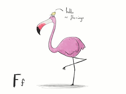 Tom Disbury Illustration - Tom, Disbury, Tom Disbury, Digital, Photoshop, Illustrator, educational, fiction, picture book, editorial, paint, textured, typography, alphabet, letter, animals, zoo, flamingos, birds, chicks, pinks, feathers, wings