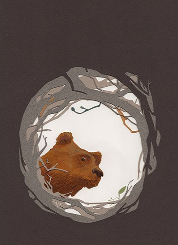 Zuzanna Celej Illustration - zuzanna celej, illustrator, traditional, texture, painted, watercolour, layers, paper, textiles, colour, colourful, picture book, trade, bear, animal, wild, trees, circle, hole, looking, hibernate, habitat, nature, light, dark,