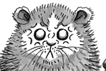 Olivia Palmer Illustration - olivia palmer, olivia, palmer, b&w, black and white, fiction, digital, pen & ink, grey scale, chapter books, ya, young adult,animals, mouse, shrew, hamster, fluffy, annoyed, angry, mushrooms,