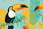 Paula Bowles Illustration - paula, bowles, paula bowles, digital, illustrator, photoshop, YA, young reader, picture book, fiction, repeat pattern, pattern, birds, colourful, leaves, print, tropical