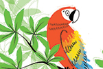Paula Bowles Illustration - paula, bowles, paula bowles, digital, illustrator, photoshop, YA, young reader, picture book, fiction, sketchy, leaves, parrot, colourful, bird, animal