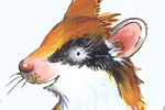Peter Wilks Illustration - peter, wilks, peter wilks, paint, painted, watercolour, water colour, traditional, commercial, educational, picture book, picturebook, fiction, acrylic, animals, mice, mouse